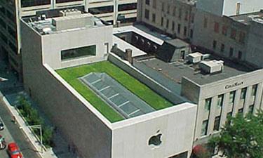 Jardin en la terraza de la Apple Store de Chicago